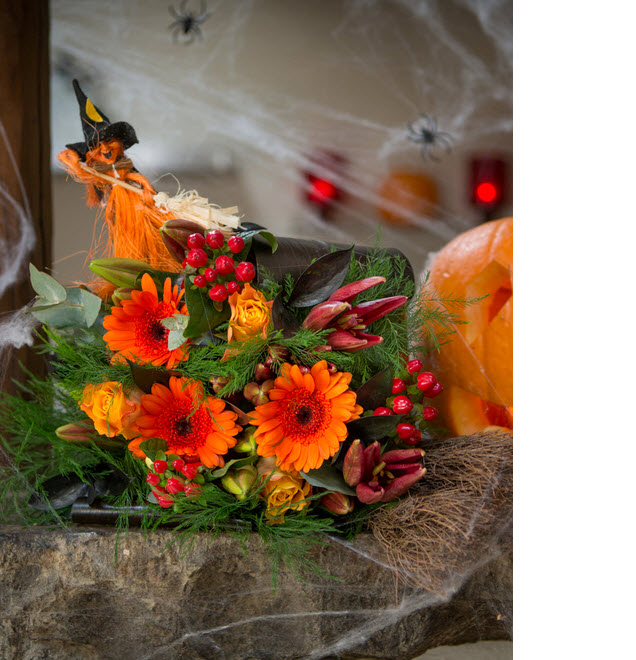 halloween flowers cobwebs spiders