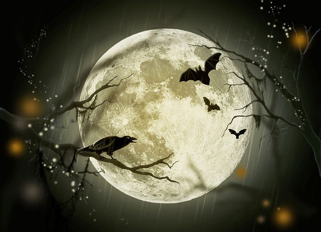 full moon bats halloween