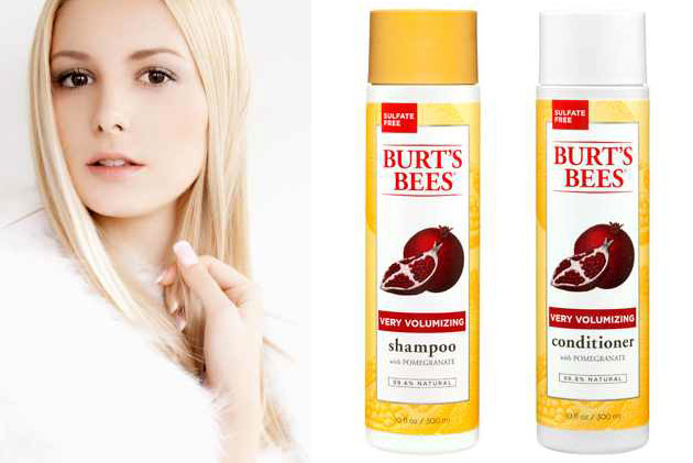 Burts Bees Hair Products