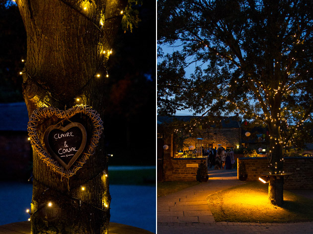 Claire and Conal's Real Wedding Tree Lights