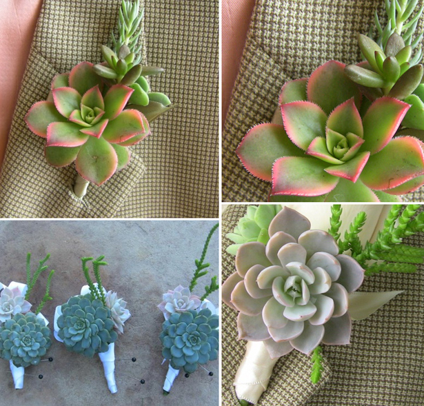 Wedding succulent blue and pink and green boutonnieres and buttonholes | Confetti.co.uk