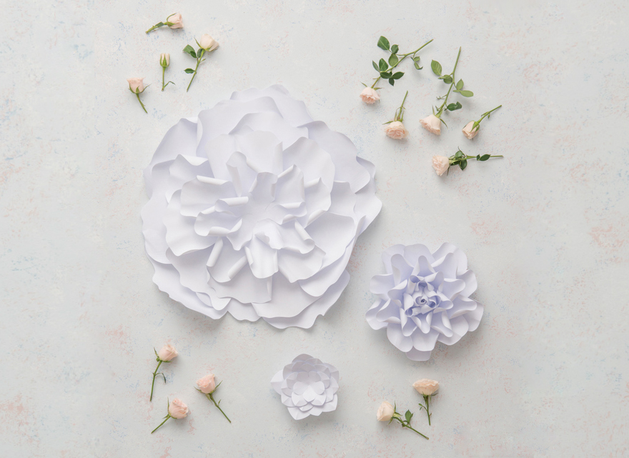 Paper Flowers | Confetti.co.uk