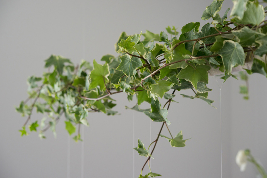 Green Ivy Wedding Decorations | Confetti.co.uk