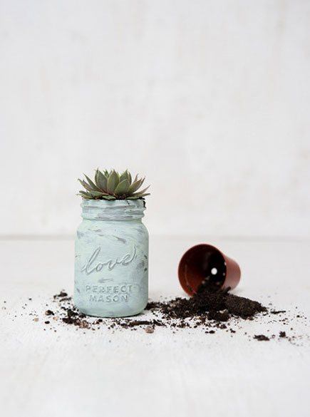 Succulent Wedding Favours | Confetti.co.uk