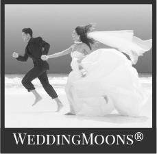 Sandals weddingmoons black and white