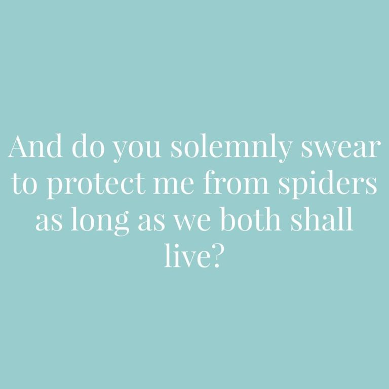 And do you solemnly swear to protect me from spiders as long as we both shall live | Confetti.co.uk