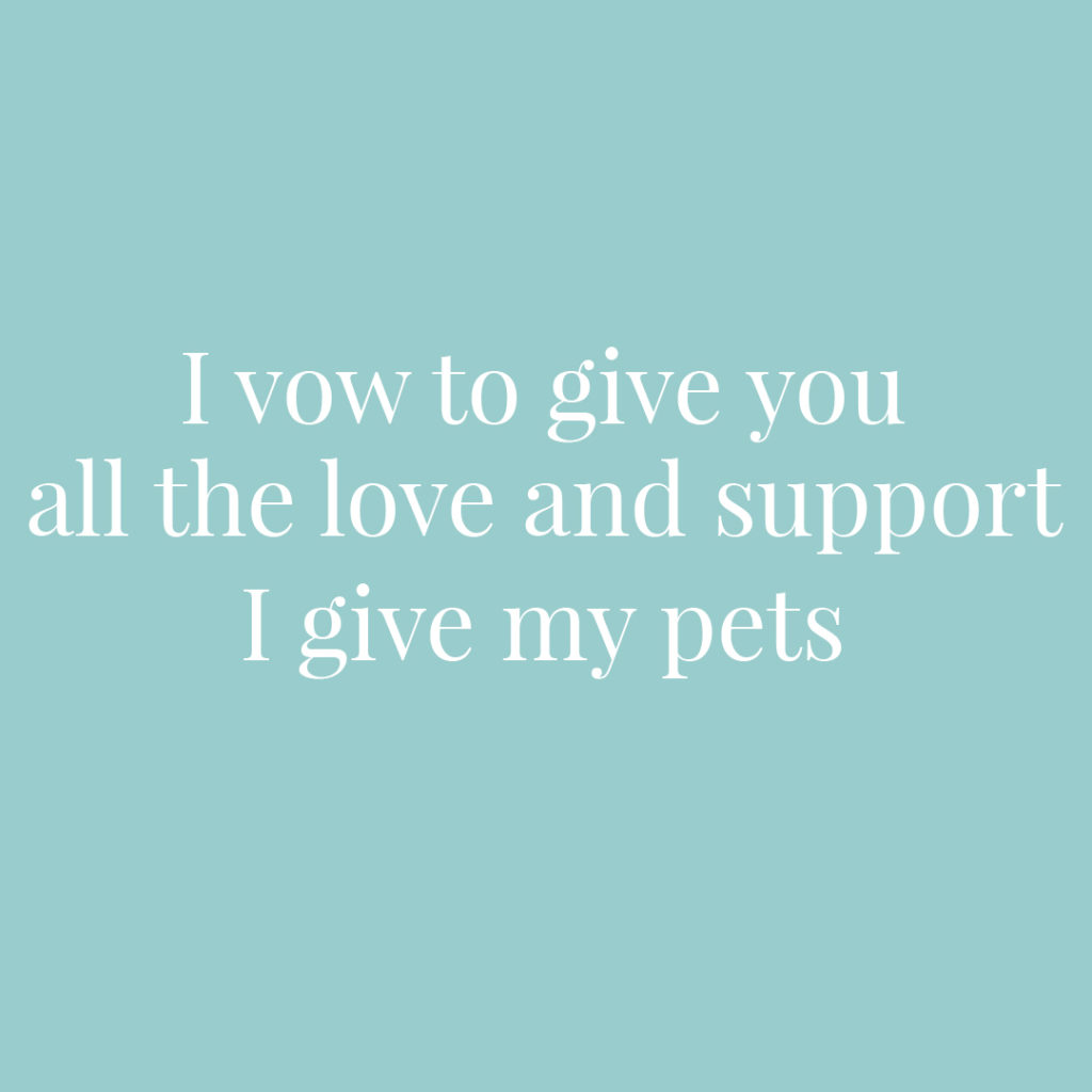I vow to give you all the love and support that I give my pets | Confetti.co.uk