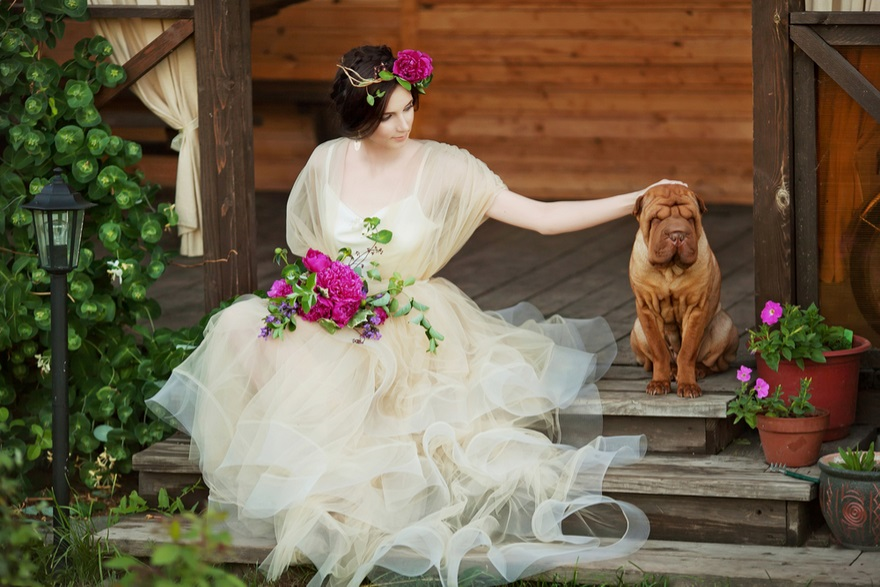 How to Include Your Dog in Your Wedding Day | Confetti.co.uk