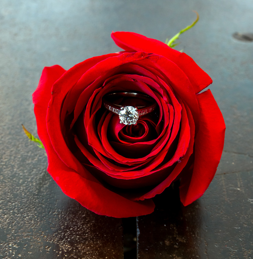 Diamond Ring in a Red Rose Wedding Photo Idea | Confetti.co.uk