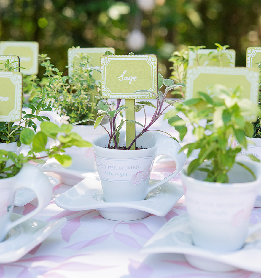 Miniature Wooden Decorative Stakes - Garden Wedding Reception Ideas - Herbs Wedding Favours - Teacup Wedding Favours - White and Green Wedding | Confetti.co.uk